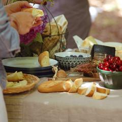 Potluck-picnic