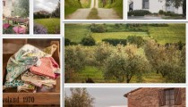 Workshop in Toscana18 – 20 settembre 2015